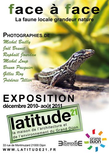 Exposition Dijon : Un Face à Face avec la faune locale