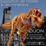 Exposition un T-rex dans la ville à Dijon