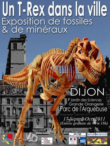 Exposition Dijon : Un T-Rex dans la ville