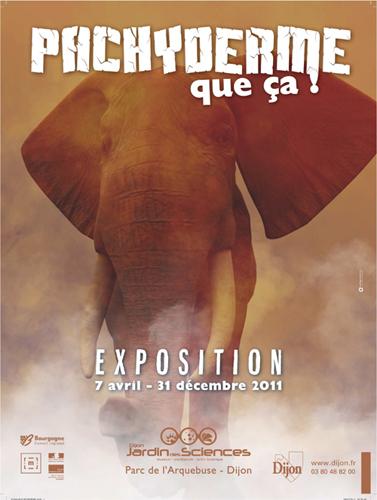 Expostion Dijon : Pachyderme….que ça !