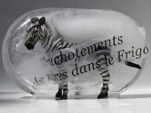 Spectacle Dijon : Chuchotements de zèbres dans mon frigo