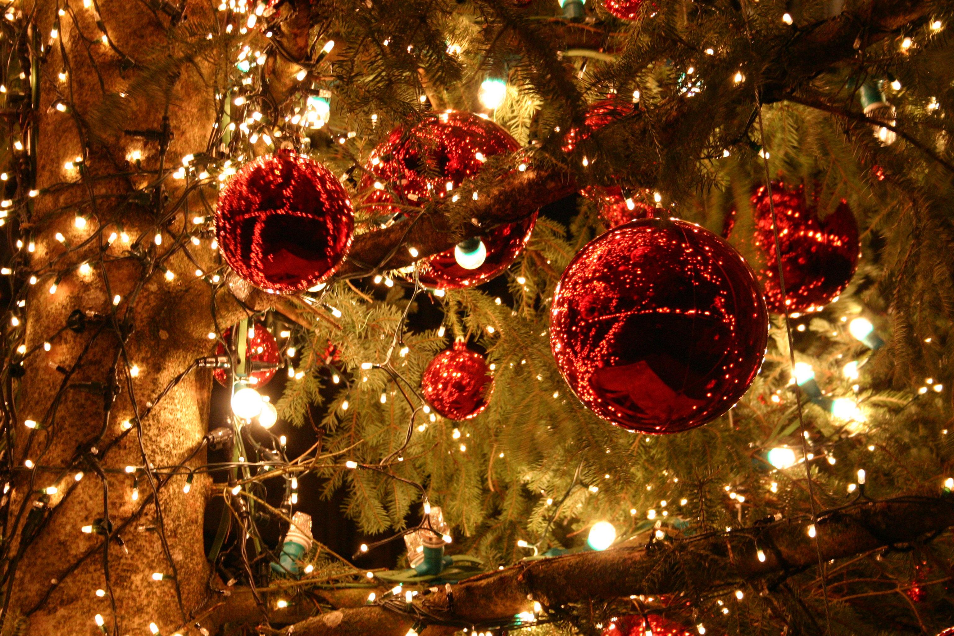 Activité Dijon : Un Noël 2012 extraordinaire sur les manèges !